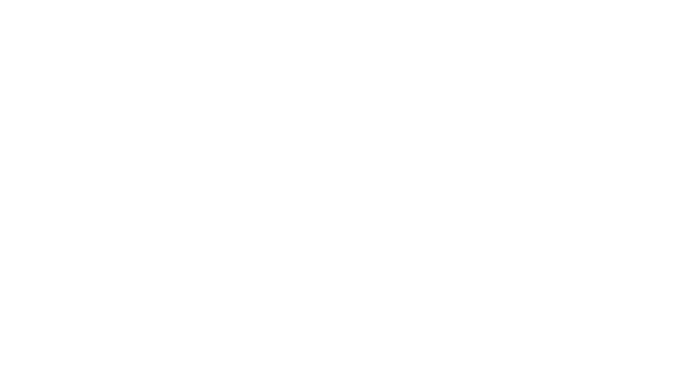 QESST Logo, White